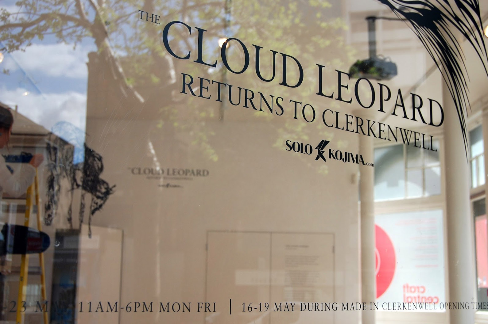 The Cloud Leopard
